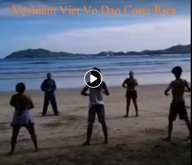 Vovinam Viet Vo Dao Costa Rica